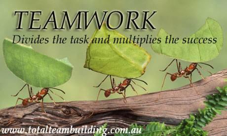 teamwork divides task quote